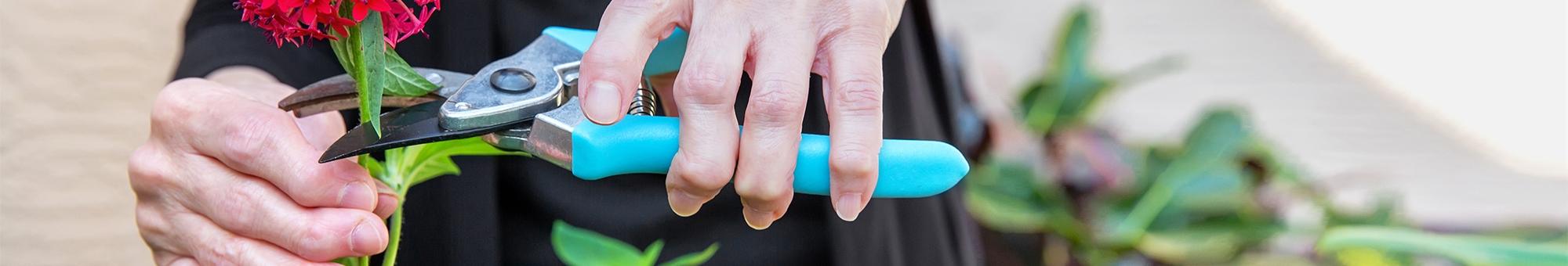 Arthritis - Care